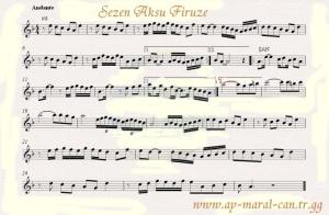 firuze22